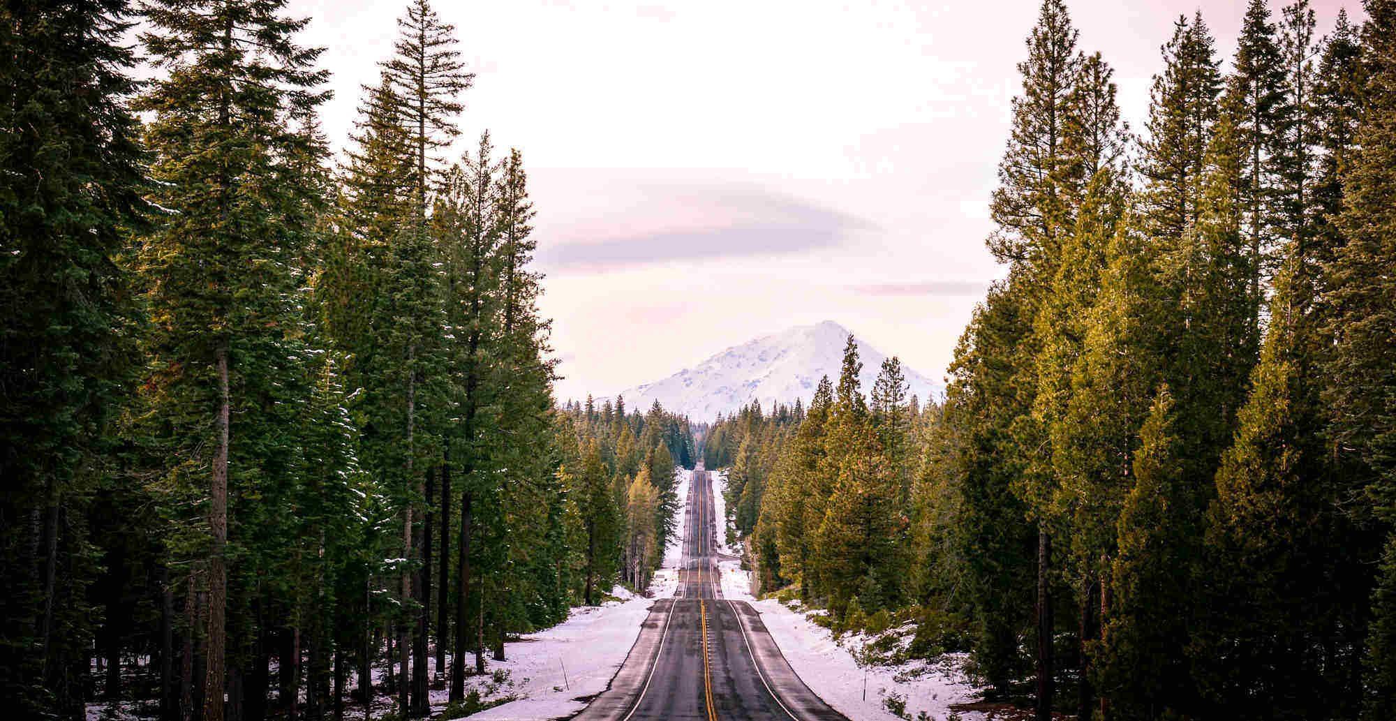 MS & rijbewijs: CBR rijtest